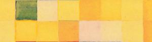 jaune bande-vert1